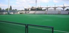 Hokej na travi