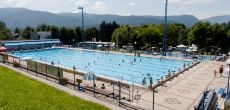 Swimming camp Radovljica